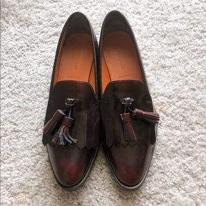 Everlane Modern Oxford Size 7